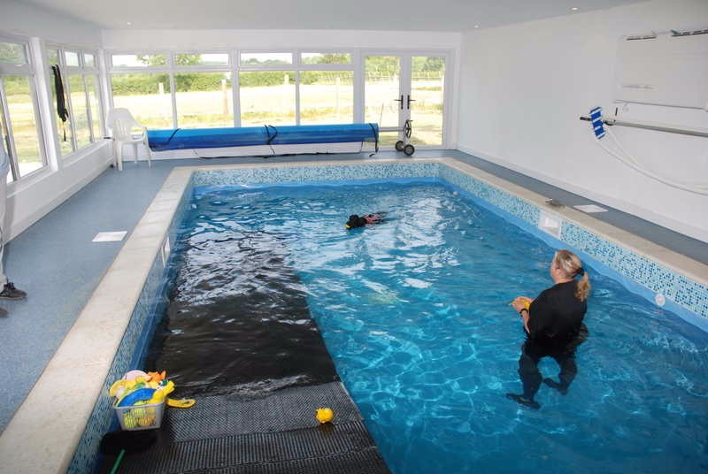 East Sussex Canine Hydrotherapy Centre Natural Vet Directory
