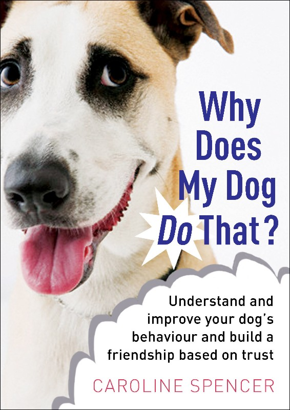H2-Why-Does-My-Dog-11a-3