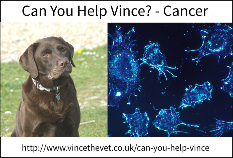 Can-You-Help-Vince-Cancer
